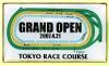 Tokyo_race_course_grand_open_200704