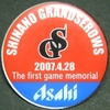Pins_bc_shinano_grandserows_the_fir
