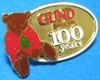 Pins_gund_100_years