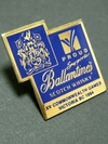 Pins_1994_commonwealth_games_vict_2
