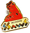 Pins_ski_dome_ssaws