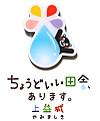 Pins_kumamon_kamimashiki