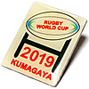 Pins_2019_rugby_world_cup_kumagaya