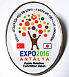Pins_expo_2016_antalya_japan