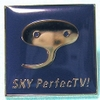 Pins_sky_perfect_tv